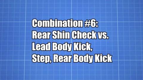 Combination #6
