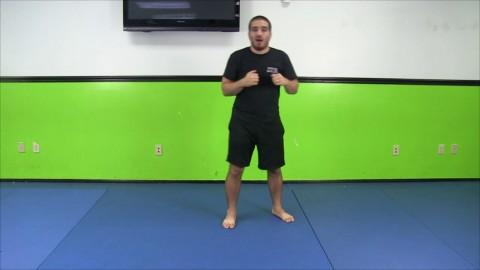 Rear Leg Pivot