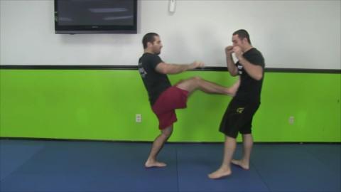 Push Front Kick