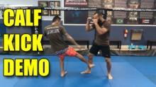 UFC Fight Pass Leg Kick Break Technique